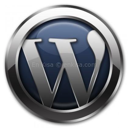 wordpress-wassup-eklentisi