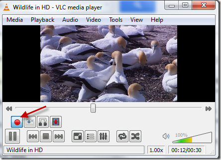 vlc-video-kirpma2
